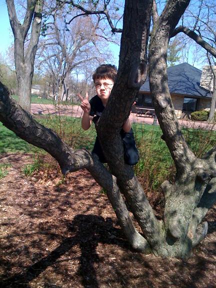 Treeboy