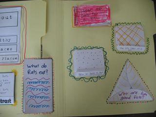 Ratlapbook3